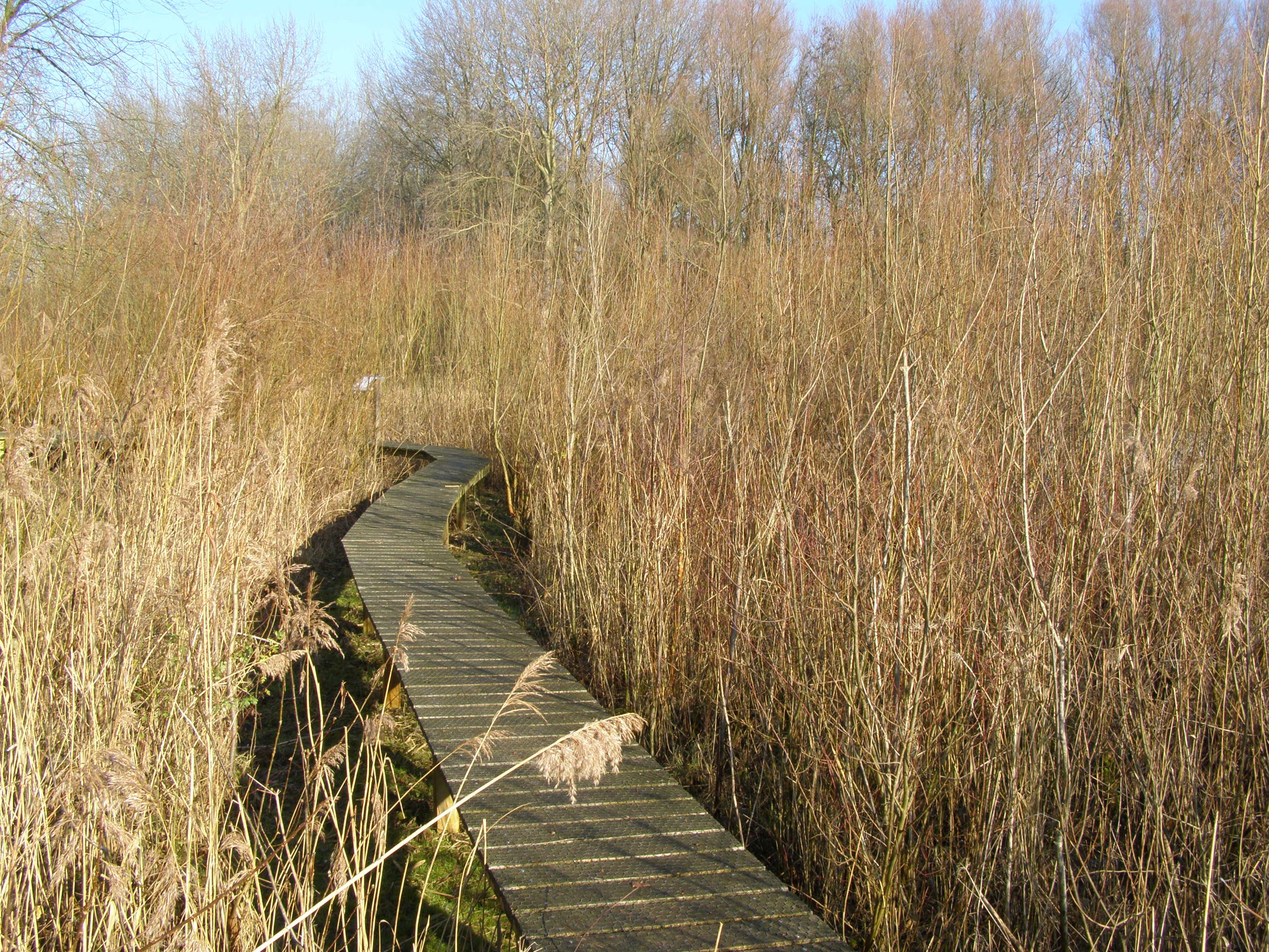 Excursie Natuurtuin, Zoetermeer