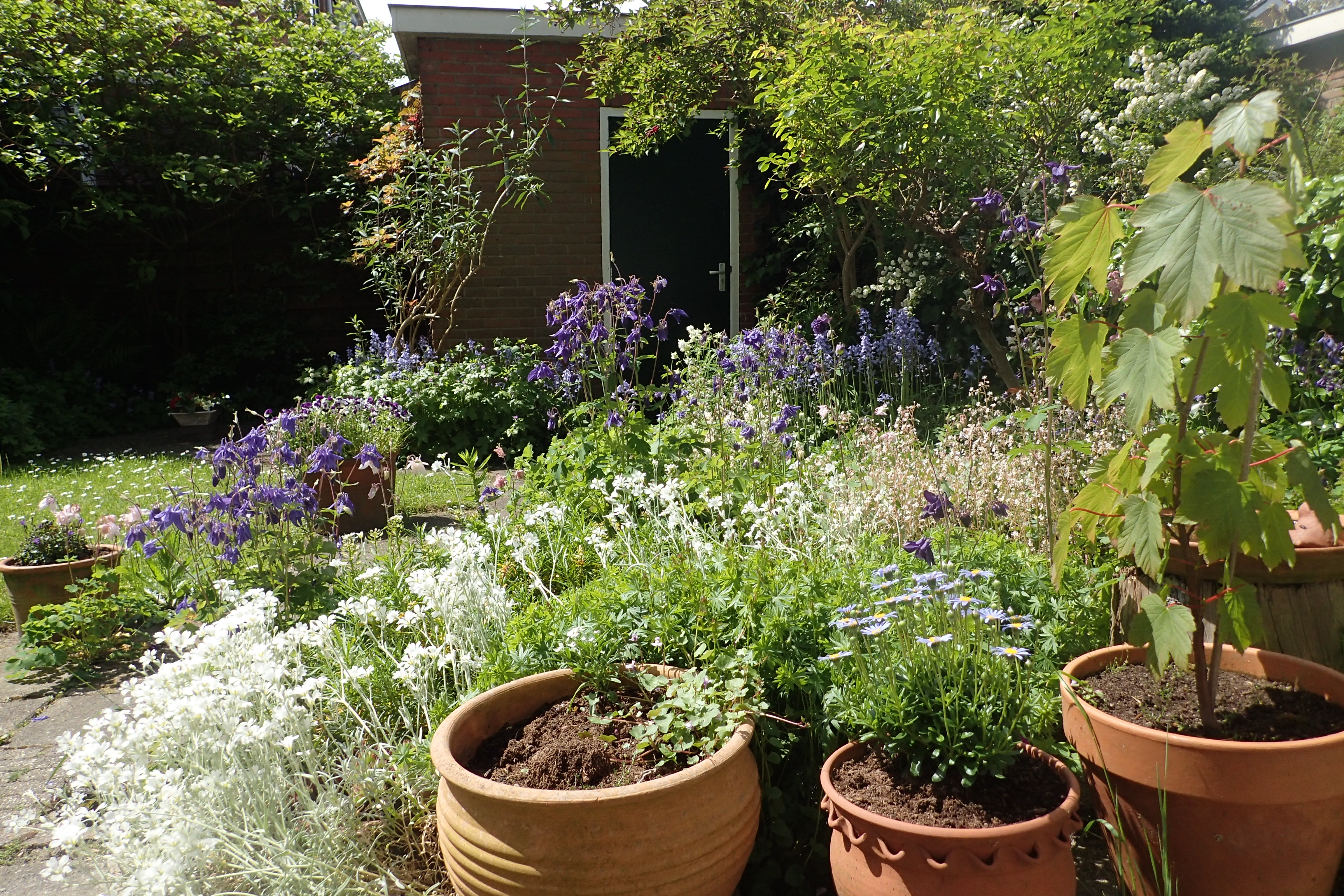 Cursus tuinen Natuurlijk, 10 april – 26 mei, Oegstgeest