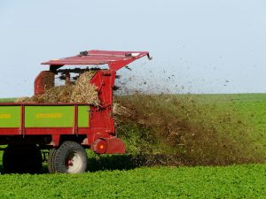 fertilize-62416_1920