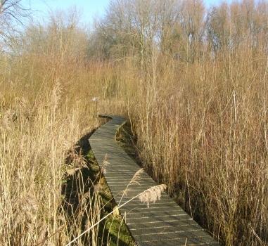 Rondleiding Natuurtuin Zoetermeer