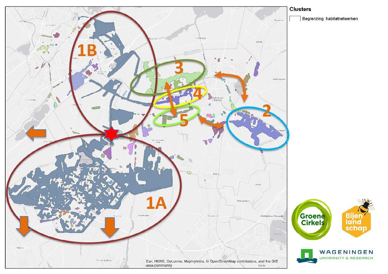 Analyse Bijenlandschapkaart geeft aan waar nieuwe bijenroutes nodig zijn