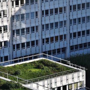 skyscraper-1697170_1920 (2)