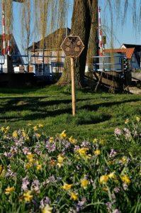 DSCF2282 (2) (681x1024) bloemenstrook gemeente Nieuwkoop