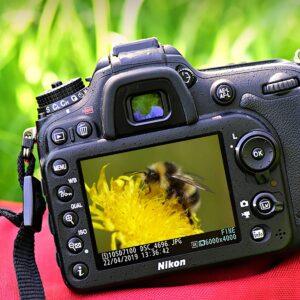 fotowedstrijd 4
