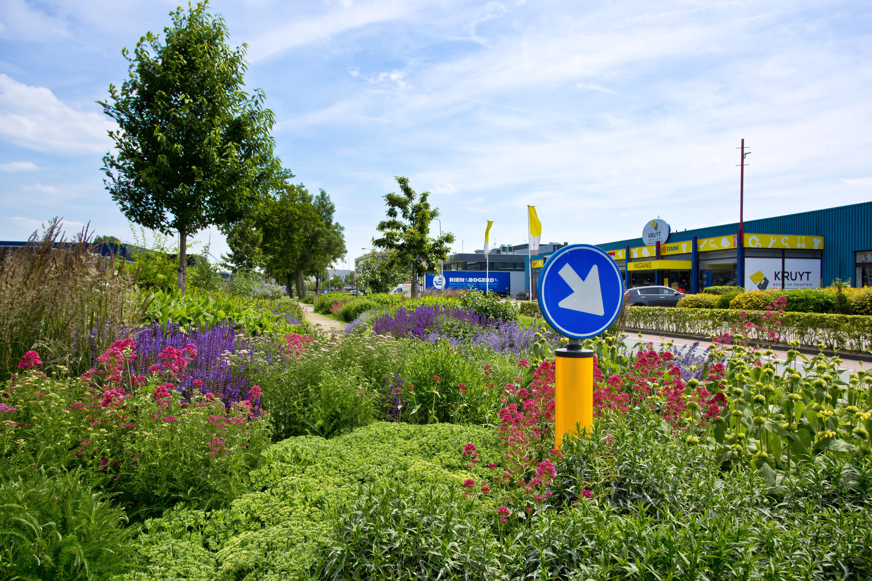 Summerschool Groen-blauwe bedrijventerreinen 18-20 oktober, aanmelden vóór 1 okt